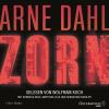 Hörbuch Cover: Zorn