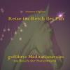 Hörbuch Cover: Reise ins Reich des Pan (Download)