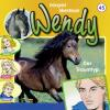 Hörbuch Cover: Wendy - Der Traumtyp (Download)