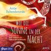 Hörbuch Cover: Wie die Sonne in der Nacht (Download)