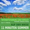 Hörbuch Cover: 11 Minuten Sommer: Auf der Wiese - Tiefenentspannung, Traumreise, Autogenes Training (Download)