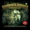 Hörbuch Cover: Sherlock Holmes Chronicles, Folge 30: Das gelbe Gesicht (Download)