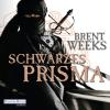 Hörbuch Cover: Schwarzes Prisma (Download)