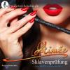 Hörbuch Cover: Sklavenprüfung (Download)