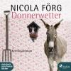 Hörbuch Cover: Funkensonntag (Download)