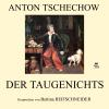 Hörbuch Cover: Der Taugenichts (Download)