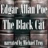 Hörbuch Cover: The Black Cat (Download)