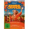 Hörbuch Cover: Sommer in Orange